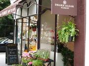 Drake Algar London