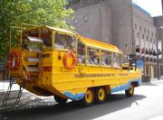 The Yellow Duck Marine Liverpool
