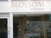 Blossom London