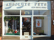 Absolute Pets London