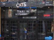 Cats Cafe Des Artistes London