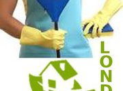 Pro Cleaners London London