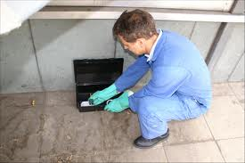 Pest Control Bethnal Green London