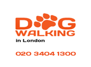 Dog Walking London London