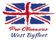 Pro Cleaners West Byfleet London