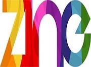 Zine Ltd Durham