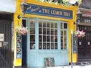 The Lemon Tree London